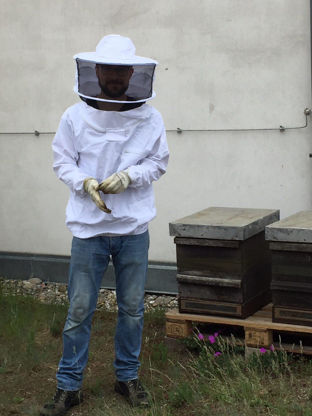 200.000 Bienen im Lette Verein Berlin