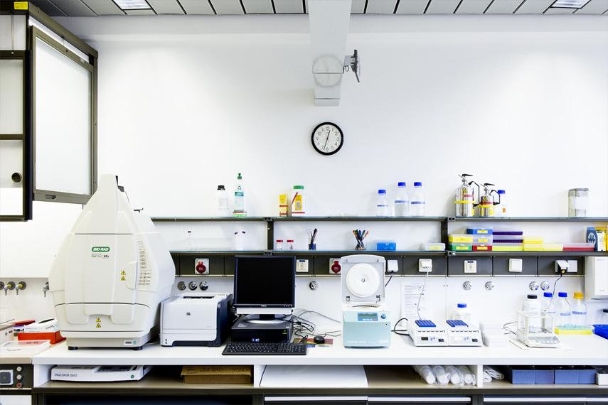 Ausstattung Chemie-Biologie Lette Verein Berlin
